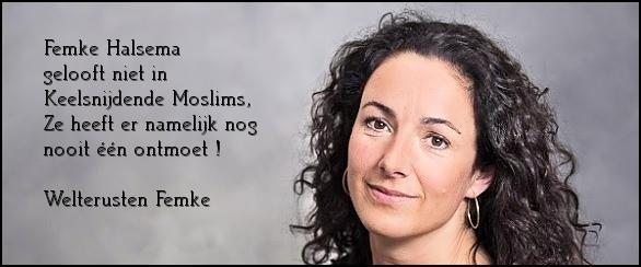 Hemke_Falsema