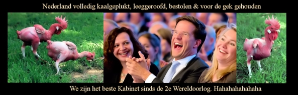 Nederland_Kaalgeplukt_door_Rutte2